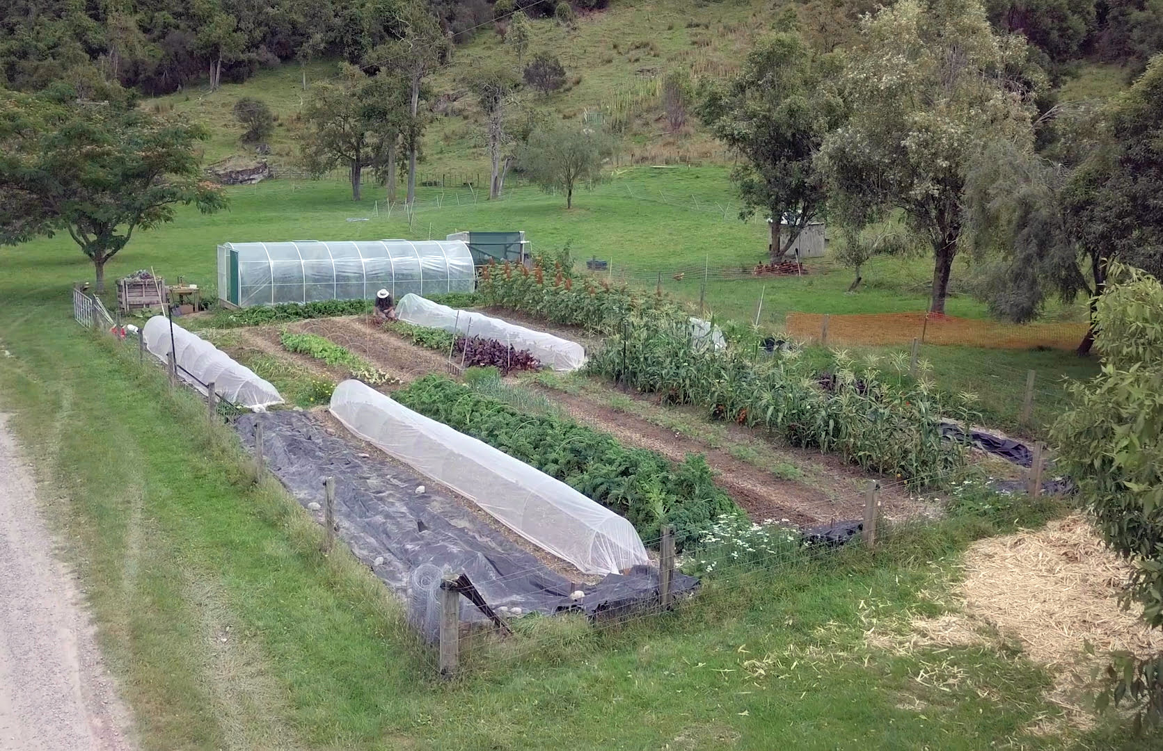 Organic Vegetable Garden at River Valley Lodge