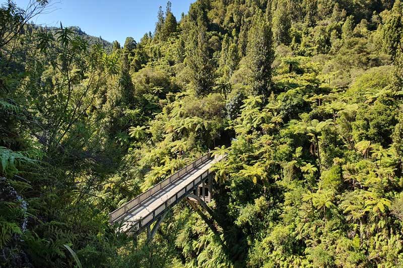 Bridge to Nowhere - Whanganui National Park
