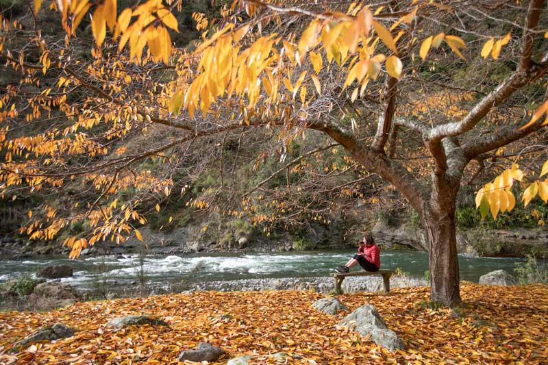 River Valley Lodge - Autumn